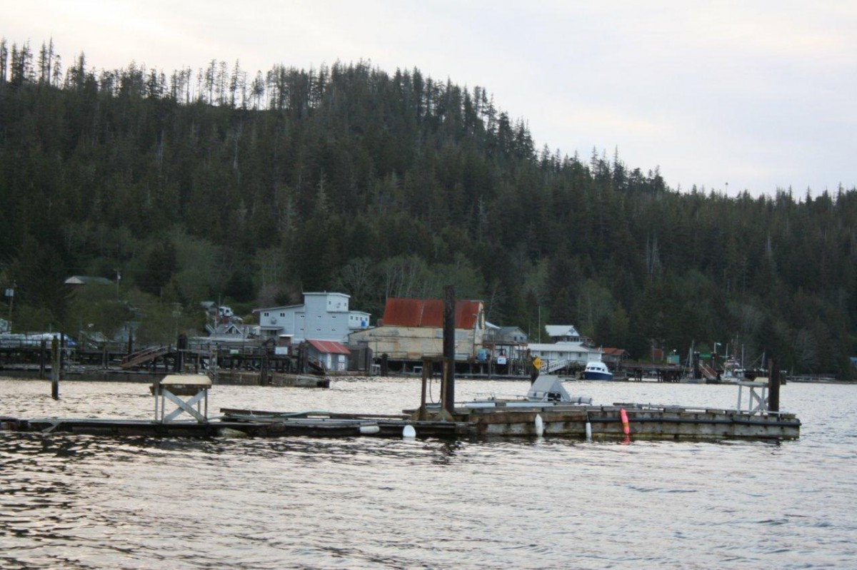 View of Winter Harbour – Northwest Vancouver Island, 2011