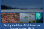 Testing the Effect of Fish Farms on Salmon Survival (TEFFS)